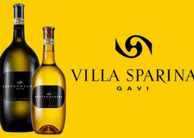 Gavi DOC – Monterotondo Villa Sparina 2012