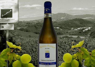 """Greco di Tufo """"Vigna Cicogna"""" (Benito Ferrara)"""