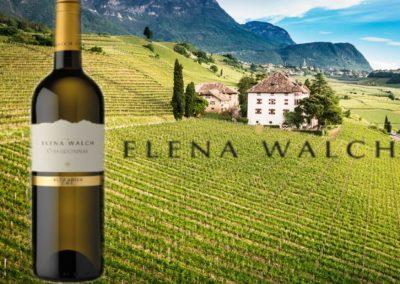 Chardonnay (Elena Walch)